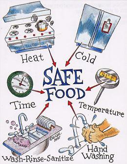 Safe Food Tips