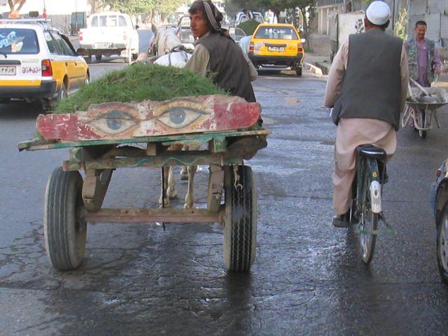 Vendor headed to Market, Kabul, Afghanistan