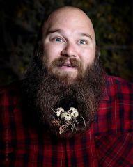 beard nest